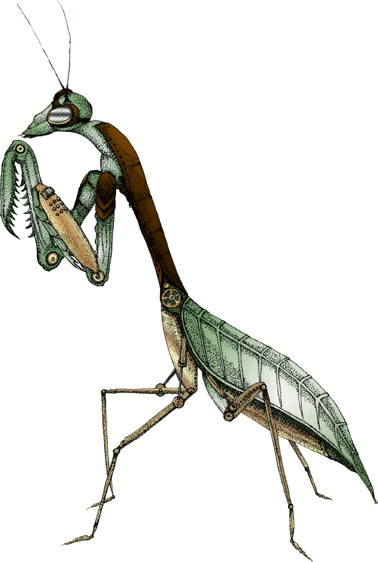 Illustration of Praying Mantis with Steam Punk Additions